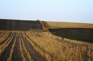 Crop Diagonals; North Dakota