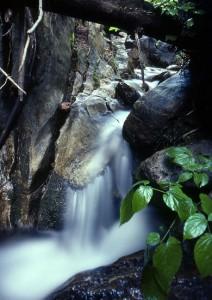 Upper Falls, Miners